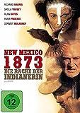 New Mexico 1873 Die kostenlos online stream