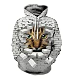 GPFDM Huge Size Unisex Hoodies 3D Animal Inside the Broken Brick Wall Printed Long Sleeves Thicker Casual Couple Sweatshirt For Mens and Womens, 6XL, Couple Hoodies, 5xl