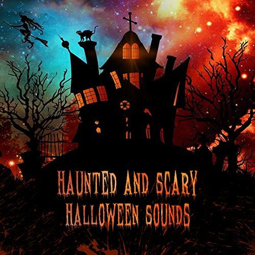 Psycho Killer in the Night (Musik Killer-halloween-party In)