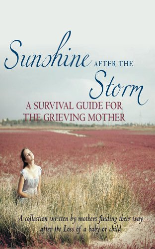 sunshine-after-the-storm-a-survival-guide-for-grieving-mothers-english-edition