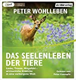 Das Seelenleben der Tiere: Liebe, Trauer, Mitgefühl - erstaunliche Einblicke in eine verborgene Welt - Peter Wohlleben