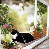 QYDSHDBQWICat hamaca/Sun asiento cama tipo cat/ventana/cojinete de carga 40lb