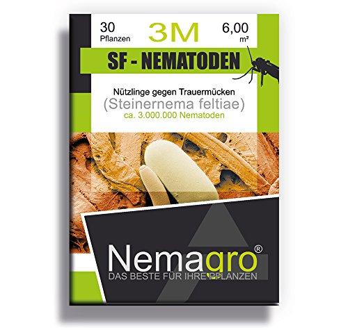 Nemagro SF Nematoden 3M (3mio 30 Pflanzen oder 6qm) - Ihre Erste Wahl gegen Trauermücken!