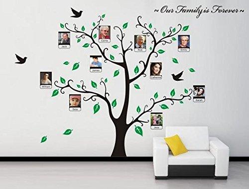 Jessie&Letty VC foto rimovibile cornice Albero Uccello parete della farfalla decalcomania grafica per Wall Stickers Home Decor farfalla Wall Decal per la scuola materna ragazze e ragazzi (0919)