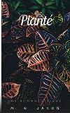 Planté (Jason Romance)