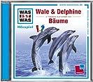 Wale&Delphine + Bäume