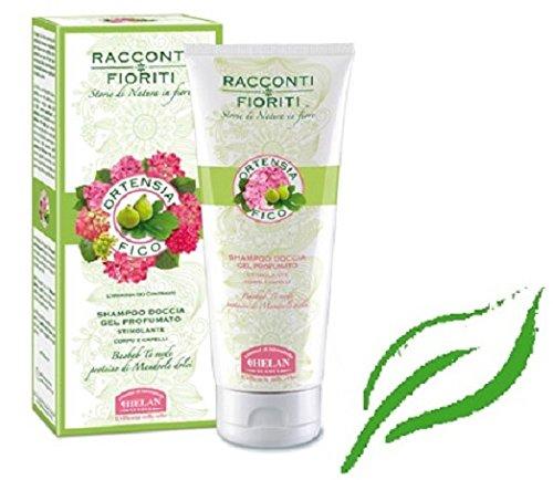 helan-hortensie-shampoo-dusche-feige-duft-200-ml