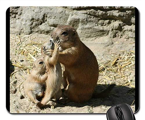 Yanteng Alfombrillas de ratón para Juegos, Alfombrilla de ratón, Prairie Dog Zoo...