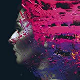 Steven Wilson: Hand Cannot Erase [Hqcd] (Audio CD)