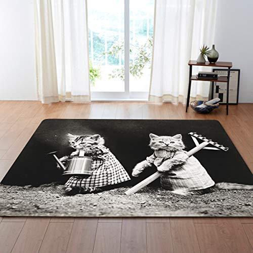 Klein Ball Teppich-Hochflor Teppich Für Wohnzimmer Zu Hause Warme Plüsch Boden Teppiche Flauschige Matten Kinderzimmer Teppich Wohnzimmer Matten Seidige Rugs121.9X160CM -