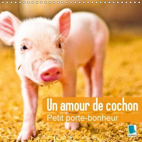 Un amour de cochon : petit porte-bonheur : Des petits cochons porte-bonheur