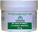 PYCNOGENOL 200 mg (per capsula) 30 capsule vegetali (dosaggio per 1 a 2 mesi) - estratto di corteccia del pino marittimo che spinge sulle coste sablonneuses al sud di Bordeaux