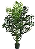 #5: Hyperboles Nearly Natural 5259 Paradise Artificial Palm Trees , 5-Feet, Green