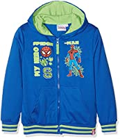 Marvel Boy's Spiderman the Greatest Sweatshirt, Blue, 2-3 Years (Manufacturer Size:3 Years)