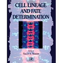 Cell Lineage and Fate Determination (1998-11-06)