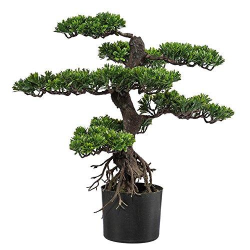 Kunstpflanze Bonsai grün, im Kunststofftopf, ca. 75 cm