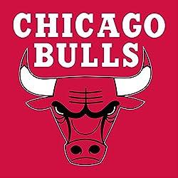 Chicago Bulls NBA Basketball Escudo de pared Pegatina Vinilo 60cm x 60cm grande (700x 600x 600mm)