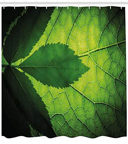 ABAKUHAUS Grün Duschvorhang, Brazilian Baum Blatt Eco, Bakterie Schimmel Resistent inkl. 12 Haken Waschbar Stielvoller Digitaldruck, 175 x 180 cm, Olive und Dunkelgrün -