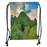 Drawstring Backpacks Bags,Nature,Mountain Path Covered by Trees Foliage Bushes Highland Woodland Landscape,Fern Green Sky Blue Soft Satin,5 Liter Capacity,Adjustable String Closure