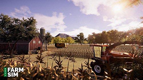 Real Farm galerija