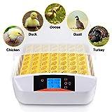 Pujuas Inkubator Vollautomatische 56 Eier Intelligentes digitales Brutmaschine Brutkasten Brutapparat Gerät Inkubationszeit ist Eclosion-Küken Brutmaschine 56 Eier