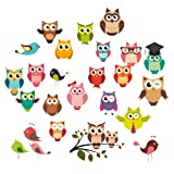 Eurographics DS-DT6040 Deco Sticker Funny Owls, 25 x 35 cm