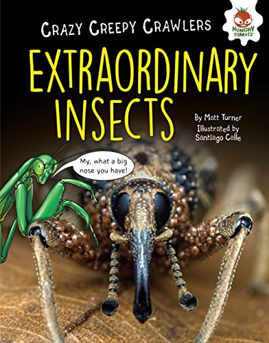 Extraordinary Insects (Crazy Creepy Crawlers) Spider Defense