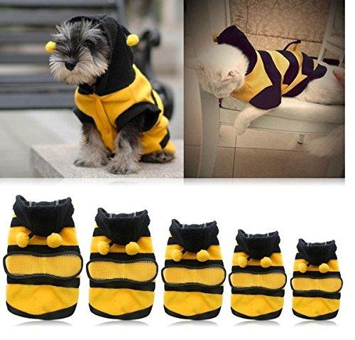 5Fünf Super Cute Funny Pet Kleidung Bee Kleidung Verklärung Teddy VIP Hund Kleidung (Hund Biene Kostüm Uk)