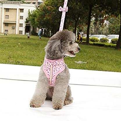Floral Pattern Tiny Small Dog Harness Leash Lead Walking Chest Strap (M, Pink) 5