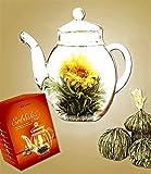 Erblüh-Tee, Teeblume 1 Geschenk-Set 6 Teekugeln und 1 Glaskanne