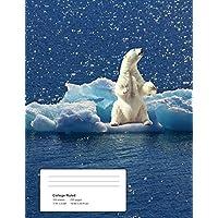 Help!: Polar Bear - Climate Crisis