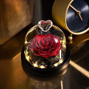 eterna rosa preservada en vidrio,