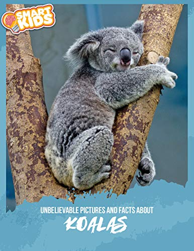 Unbelievable Pictures and Facts About Koalas (English Edition)
