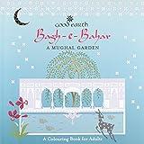 Bagh-e-Bahar: A Mughal Garden - A Colouring Book for Adults