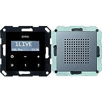 Gira 228028 Unterputz Radio RDS System 55, anthrazit