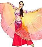 Tanzbekleidung & Accessories ISIS Wings alas Velo Danza del Vientre Belly Dance Disfraz Samba Danza de Carnaval, Bunt 5