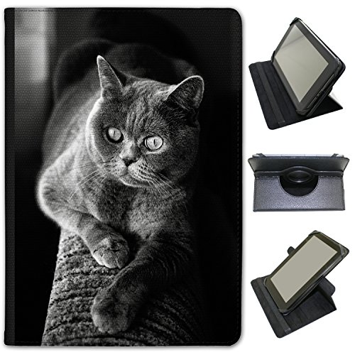 superbe-gris-chat-british-shorthair-fancy-a-snuggle-tui-en-similicuir-avec-support-de-visionnage-pou