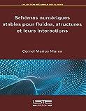 Schemas Numeriques Stables Pour Fluides
