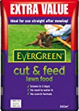 EverGreen Cut and Feed 500m sq Lawn Food Bag