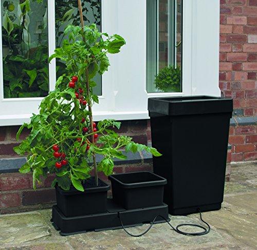 Galleria fotografica Easy2Grow 2 vasi di coltivazione idroponica starter kit