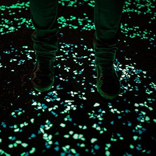 E 100 Glow Valentine Accueil Jardin Walkway Aquarium Fish Tank Stone (B) (Halloween Fish Tank Dekorationen)