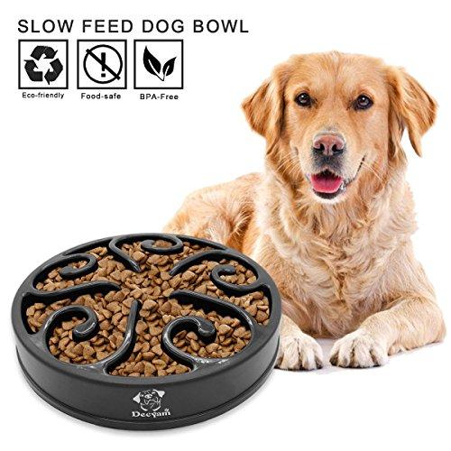 Ciotola cani mangiare lento, distributore di cibo lento, ciotola per animali da compagnia e animali domestici, interattiva, perfetta come, regalo della mamma