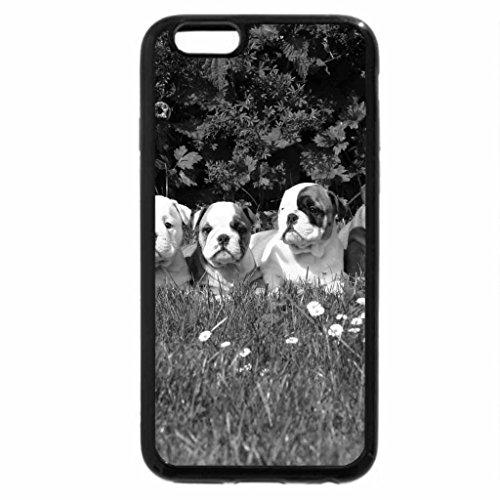iPhone 6S Plus Case, iPhone 6 Plus Case (Black & White) - English Bulldog Puppes