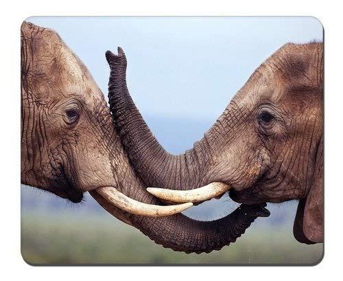 Yanteng Elefantes Alfombrilla para ratón Juego Personalizado Alfombrilla para ratón Caja Rectangular...