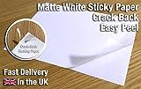 20x Easy Peel crack posteriore autoadesiva, A4, fogli bianchi personalizzabili bianco foglio adesivo etichetta foglio di carta per stampa
