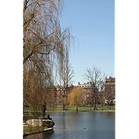 Public Garden Pond