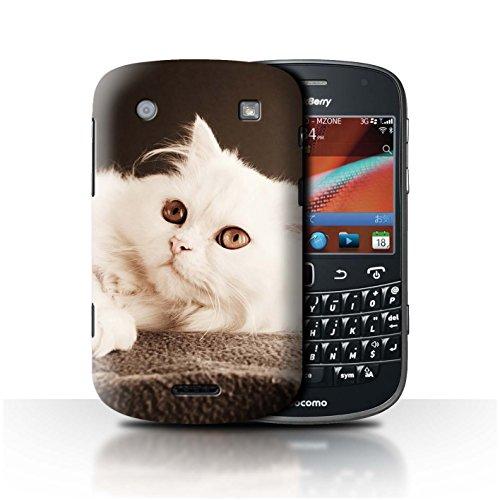 Stuff4® Hülle/Case für BlackBerry Bold 9900 / Perser Lange Haare Katze Muster Katze/Katzenrassen Kollektion -