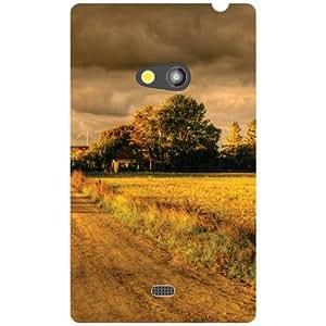 Nokia Lumia 625 Back Cover - Magnificent Designer Cases