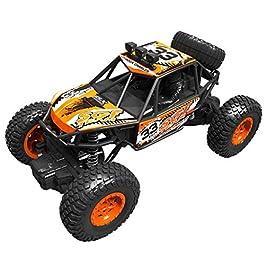 bloatboy – Auto radiocomandata, 1:20 RC, Fuoristrada 2,4 G, Telecomando per autoradio, Buggy Auto Hobby, Giocattolo per…