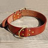 XIAOLANGTIAN Xiaolang Hundehalsband, Leder, mit robustem D-Ring und goldfarbener Schnalle, Schwarz, Braun, S, M, L, XL